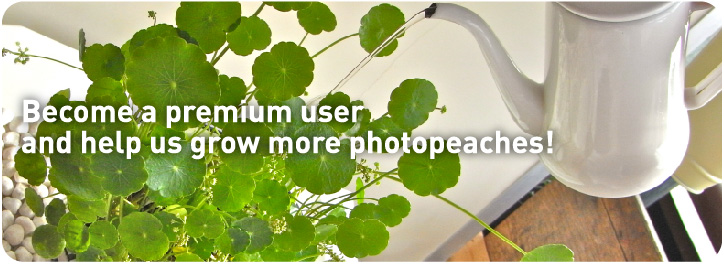Become a premium user and help us grow photopeaches!