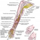 Surgical Treatment for Carpal Tunnel