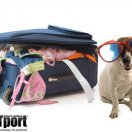 PETport Animal Travel Service Sandton Gauteng